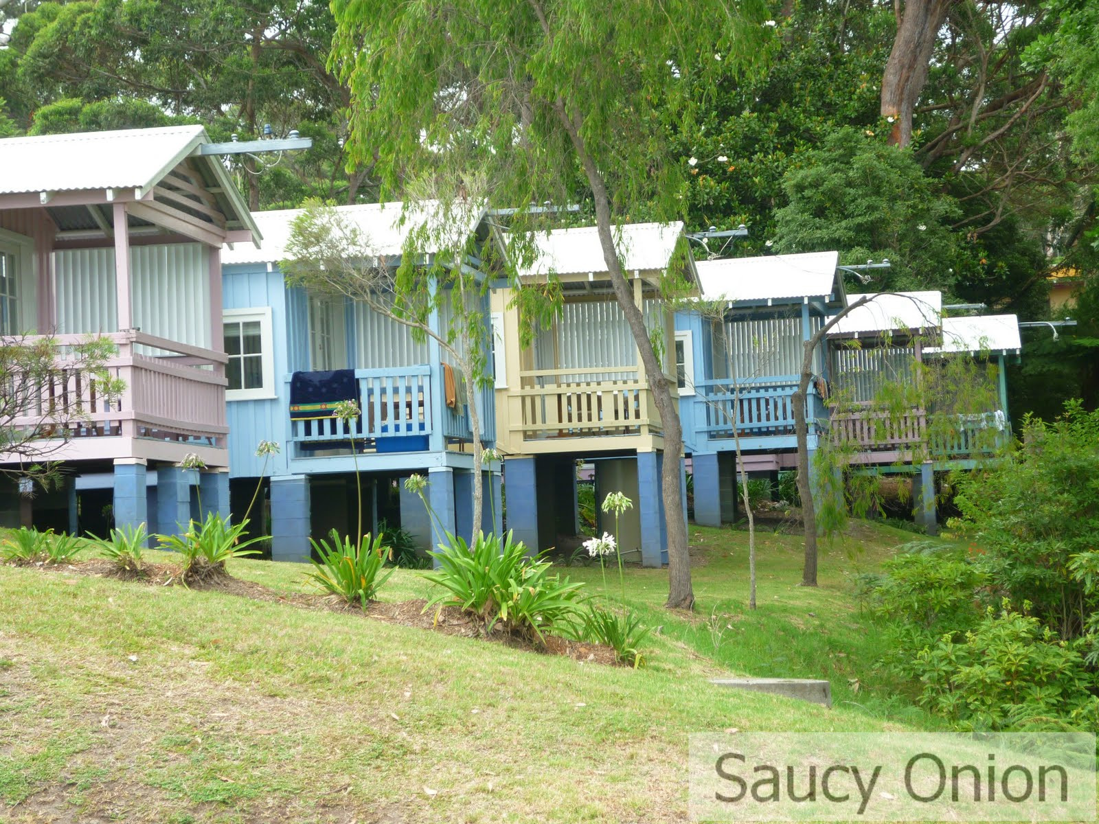 Seaside Cottages Hyams Beach Jervis Bay Saucy Onion